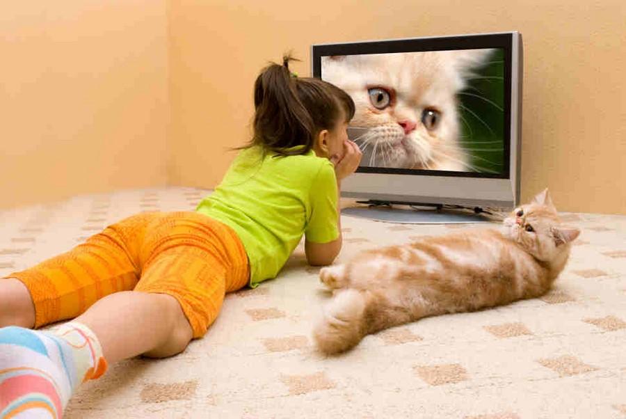 sovremennoe televidenie troyanskij kon u vas doma1 1 Present day television: «Trojan horse» in your home