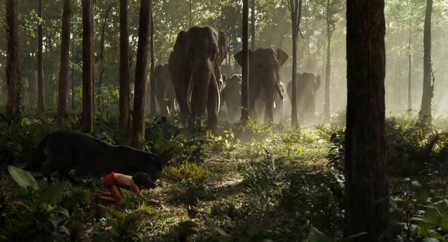the jungle book 2016 human being on the way to the light 5 «The Jungle Book» (2016): Human being on the way to the light