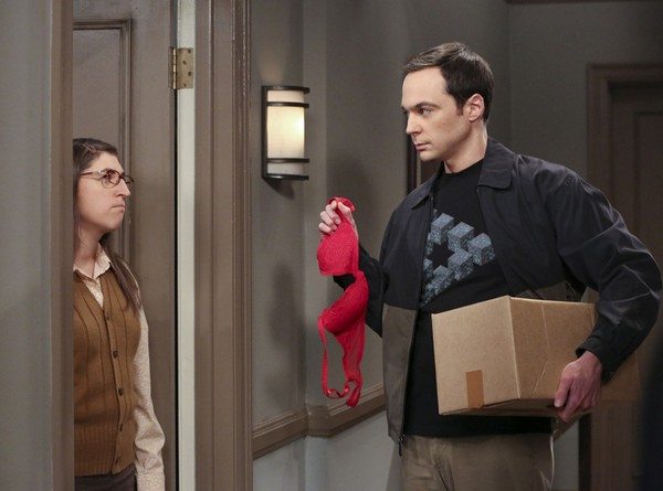 "big bang theory 7 What fans of ""The Big Bang Theory"" prefer not to notice?"