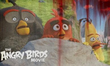 osobennosti-angloyazyichnoy-versii-multfilma-angry-birds-v-kino-0