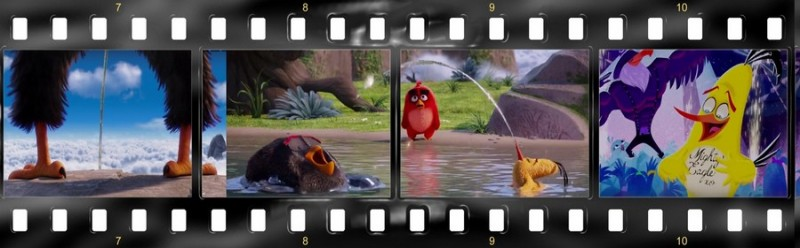 osobennosti angloyazyichnoy versii multfilma angry birds v kino 8  Features of the English version of the animated film The Angry Birds movie