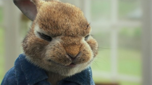 Peter Rabbit 2 The film Peter Rabbit (2018): Fluffy thieves and murderers